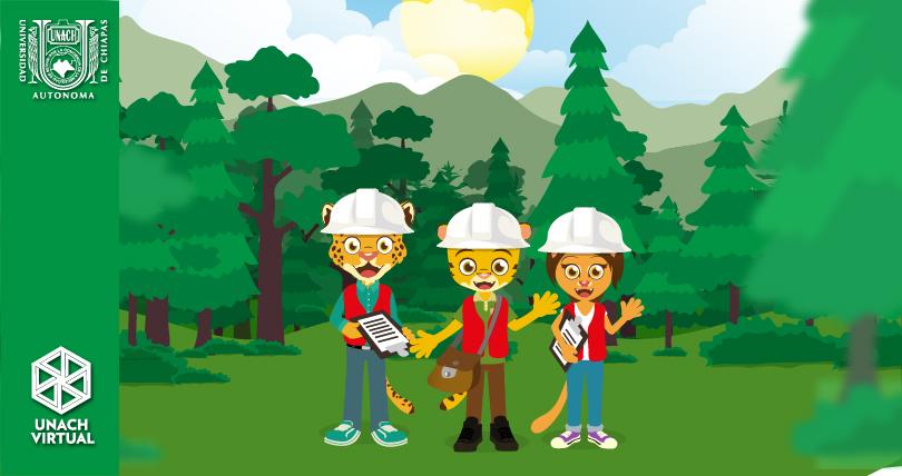 16 de agosto. Día del Ingeniero Forestal