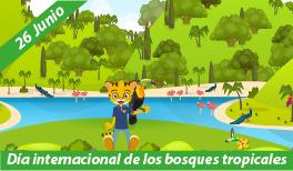 26 de junio: Día Internacional de la Preservación de los Bosques Tropicales